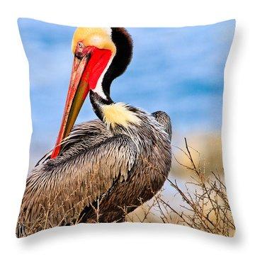 Brown Pelican Posing Throw Pillow