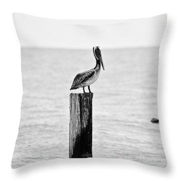 Brown Pelican Throw Pillow by Scott Pellegrin