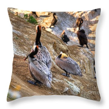 Throw Pillow featuring the photograph Brown Pelicans At Rest by Jim Carrell