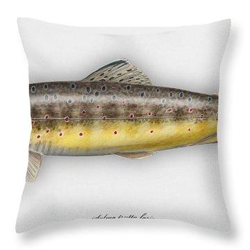 Brown Trout - Salmo Trutta Morpha Fario - Salmo Trutta Fario - Game Fish - Flyfishing Throw Pillow