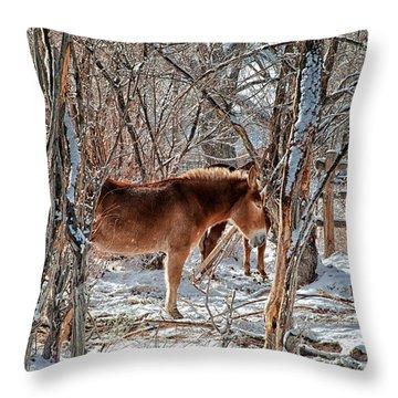Brrrrrrr Throw Pillow by Cat Connor