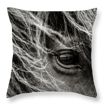Brunn Stjarna Throw Pillow by Joan Davis