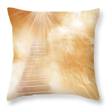 Brush Of Angels Wings Throw Pillow