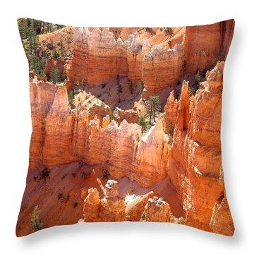 Bryce Canyon 138 Throw Pillow