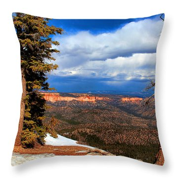 Bryce Canyon Cliff Shot 3 Throw Pillow by Marti Green