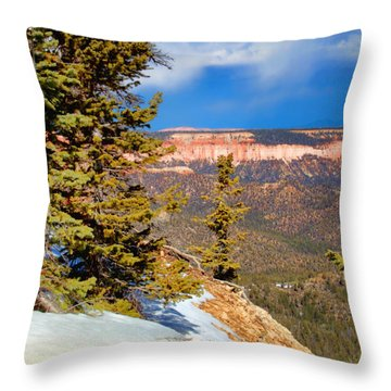 Bryce Canyon Cliff Shot 4 Throw Pillow by Marti Green