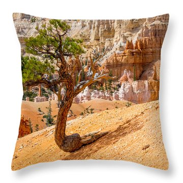 Throw Pillow featuring the photograph Bryce Canyon Np by Juergen Klust