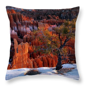 Bryce Canyon Winter Light Throw Pillow