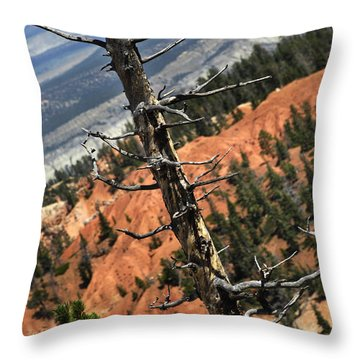 Bryce Tree Throw Pillow