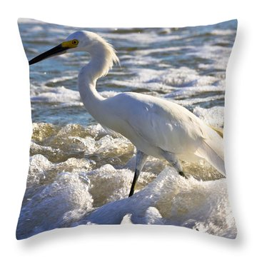 Bubbles Around Snowy Egret Throw Pillow