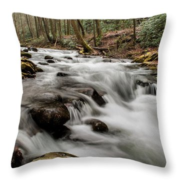 Bubbling Mountain Stream Throw Pillow by Debbie Green