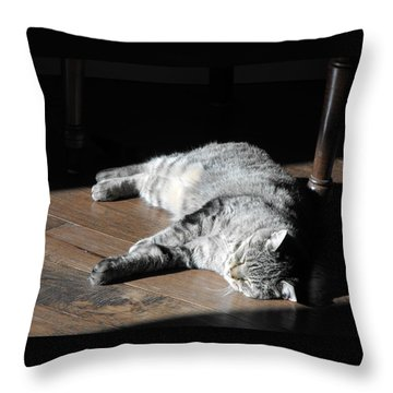 Bubby Throw Pillow by David and Lynn Keller