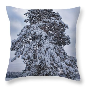 Buck Lake Flocked Pine Throw Pillow