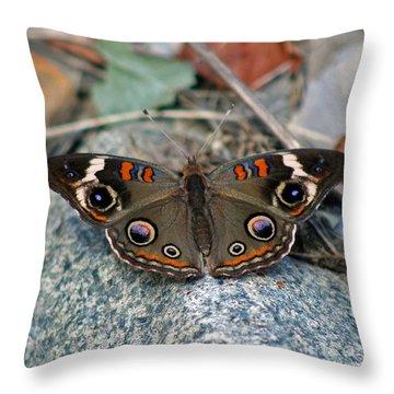 Buckeye Butterfly On Rocks Throw Pillow