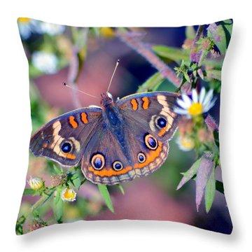 Buckeye Throw Pillow by Deena Stoddard