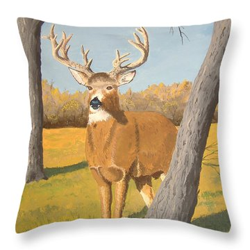 Bucky The Deer Throw Pillow by Norm Starks
