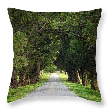 Bucolic - D008564 Throw Pillow by Daniel Dempster