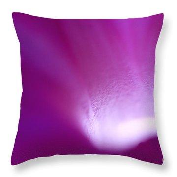 Buddhas Light  Throw Pillow