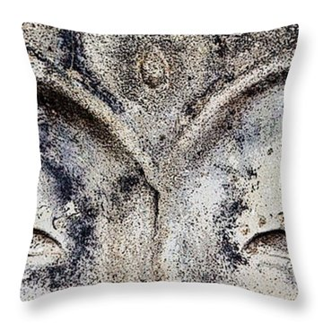 Throw Pillow featuring the photograph Buddha Eyes by Roselynne Broussard