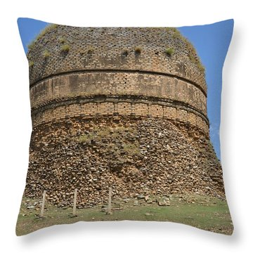 Buddhist Religious Stupa Horse And Mules Swat Valley Pakistan Throw Pillow by Imran Ahmed