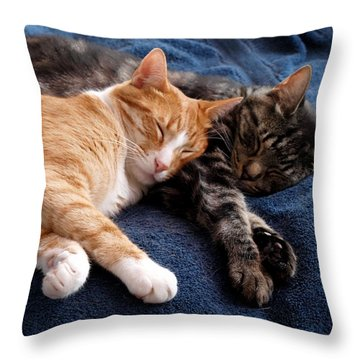 Buddies For Life Throw Pillow