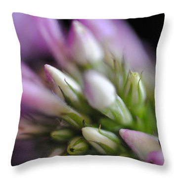 Budding Phlox Throw Pillow by Mary A Mergener