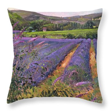 Buddleia And Lavender Field Montclus Throw Pillow by Timothy Easton