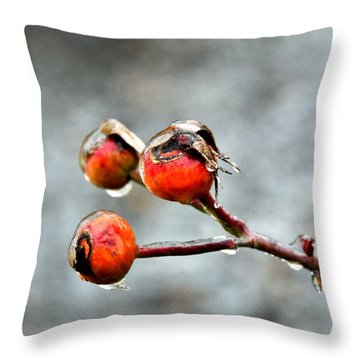 Buds On Ice Throw Pillow