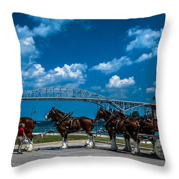 Budweiser Clydsdales And Blue Water Bridges Throw Pillow