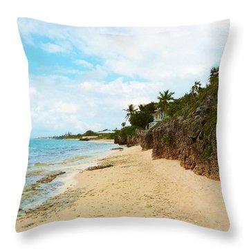 Throw Pillow featuring the photograph Buena Vista by Amar Sheow