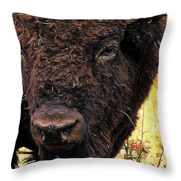 Ragweed Buffalo Throw Pillow