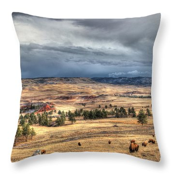 Buffalo Before The Storm Throw Pillow