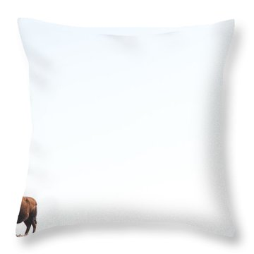 Buffalo Country Throw Pillow