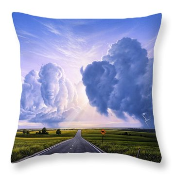 Nato Buffalo Crossing Throw Pillow