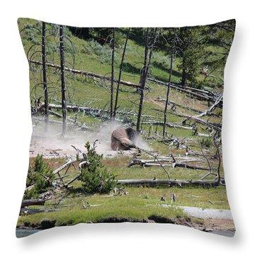 Buffalo Dust Bath Throw Pillow