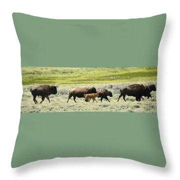 Buffalo Family Throw Pillow