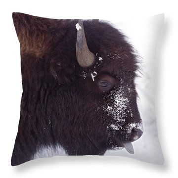 Buffalo In Snow   #6983 Throw Pillow by J L Woody Wooden