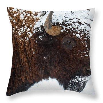 Buffalo Nickel Throw Pillow by Jim Garrison