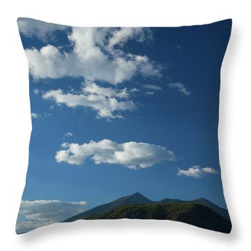 Throw Pillow featuring the photograph Buffalo Park 1 by Tom Kelly