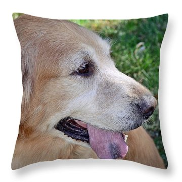 Throw Pillow featuring the photograph Buffie by Lisa Phillips
