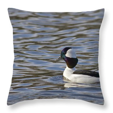 Bufflehead Duck Throw Pillow
