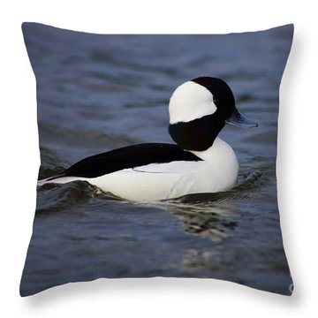 Bufflehead Up Close Throw Pillow