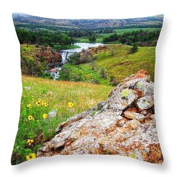 Buford Lake  Throw Pillow