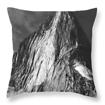 102756-bugaboo Spire Throw Pillow