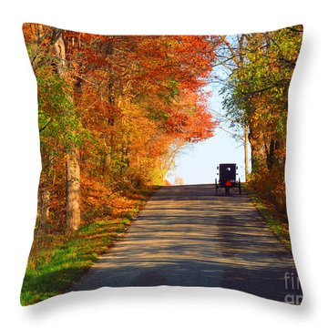 Buggy On A Lonely Road In The Fall Throw Pillow by Tina M Wenger