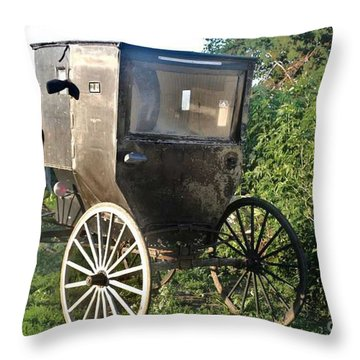 Buggy Throw Pillow by PainterArtist FIN