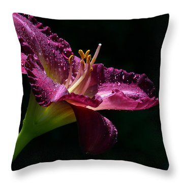 Bugler Throw Pillow