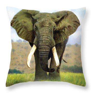 Bull Elephant Throw Pillow by Chris Heitt