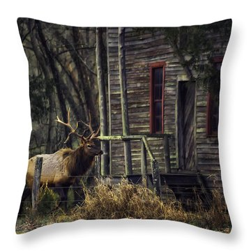 Bull Elk By The Old Boxley Mill Throw Pillow