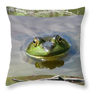 Bull Frog And Pond Throw Pillow